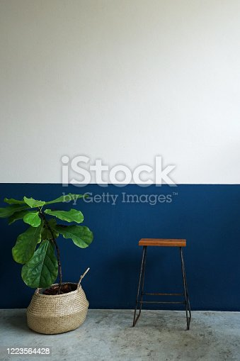 902720222 istock photo A white and blue wall room decorated with wooden chair and indoor green plant pot 1223564428