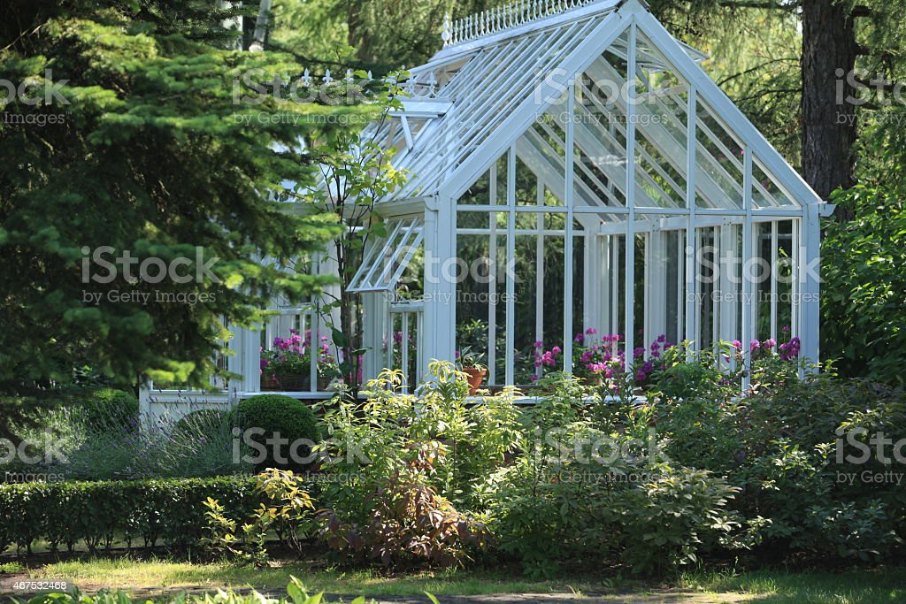 White and glass greenhouse surrounded by budges and trees stock photo