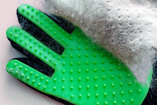weißes und graues haar von haustier auf grünem handschuh nach der pflege, entfernung von wolle - entfernen von tierhaaren stock-fotos und bilder