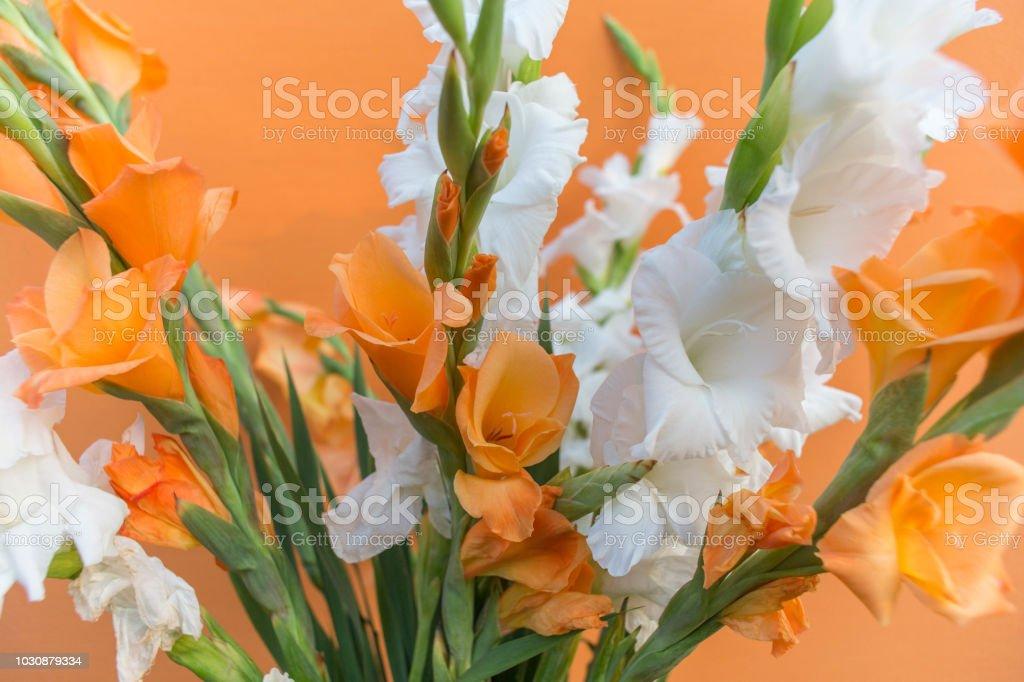 Ramo De Flores De Gladiolos Blancos Y Naranja Foto De Stock