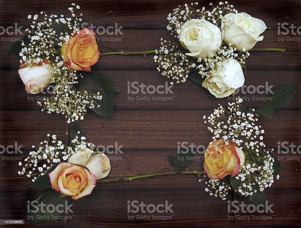 White and Peach Rose Frame on old Barn wood stock photo