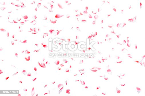 istock White and pink artificial rose petals confetti falling, isolated 180757621