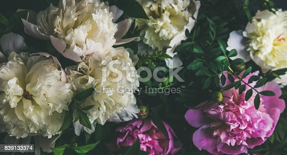 istock White and pink peony flowers over dark background 839133374