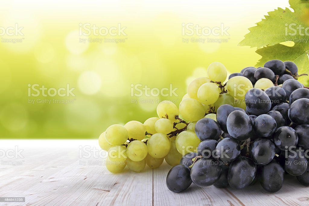 White and red grapes on table in vineyard stock photo