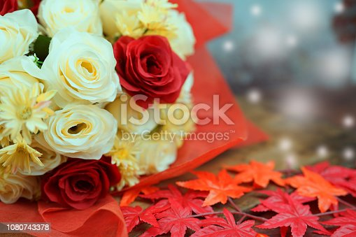 white and red rose in christmas and valentine concept