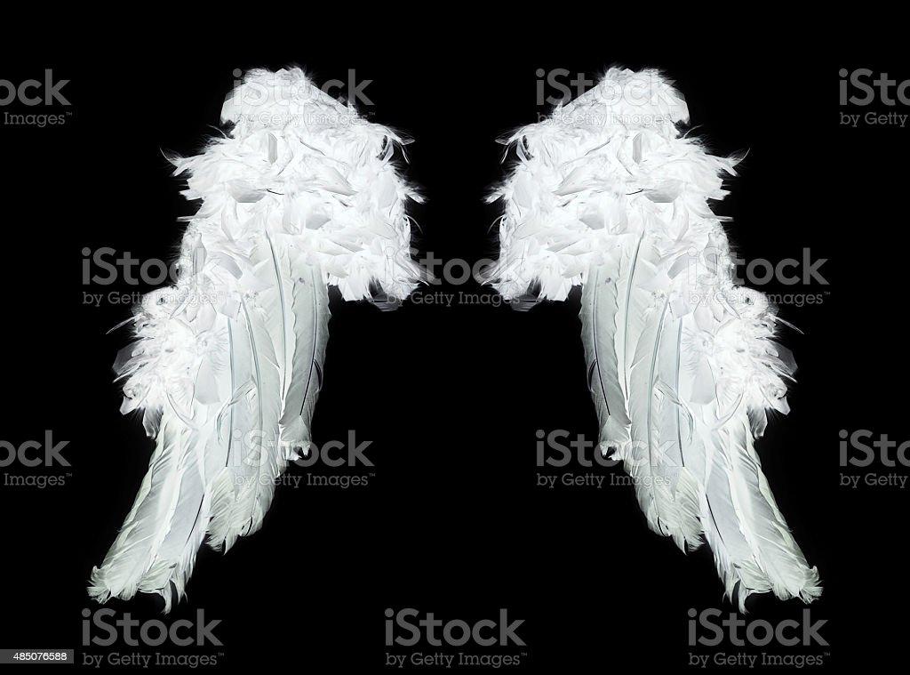 White angel wings stock photo