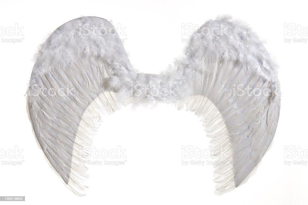 artificial de alas blancas - foto de stock