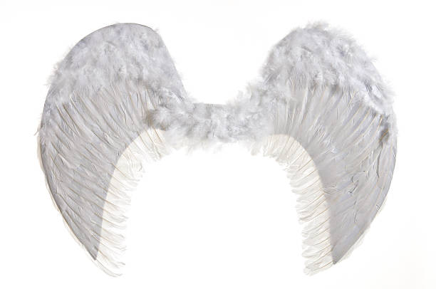 white artificial wings stock photo
