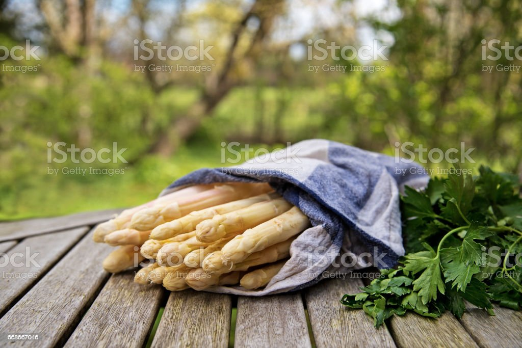 White asparagus on a  wooden table outdoors in the garden stock photo