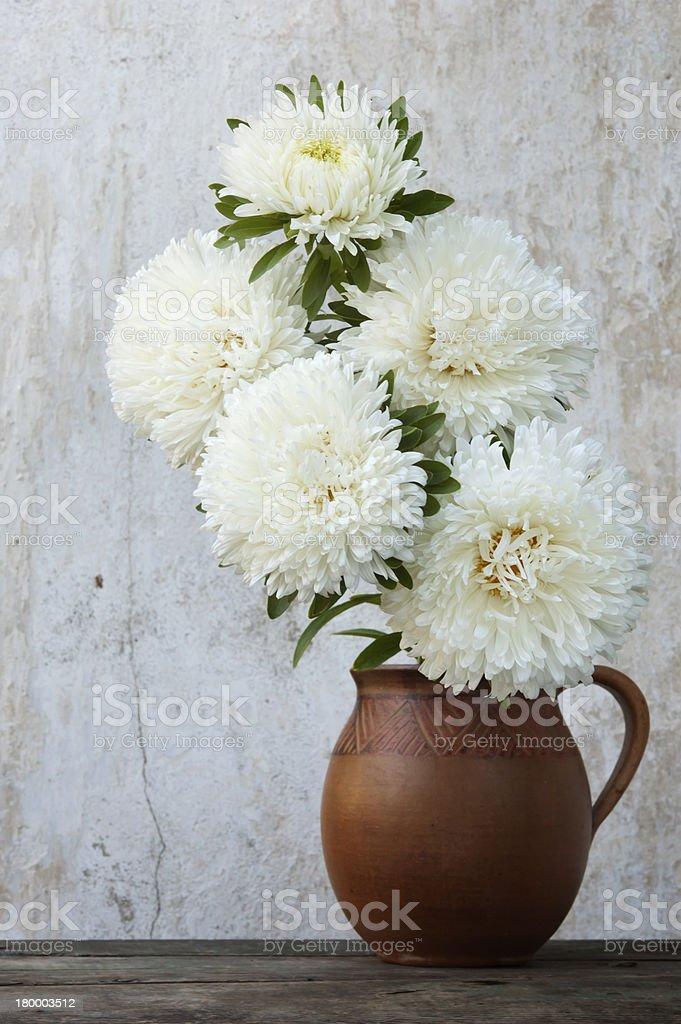 인명별 asters (jar, 정물 사진 royalty-free 스톡 사진