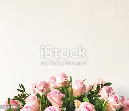 White background and frame with pink roses
