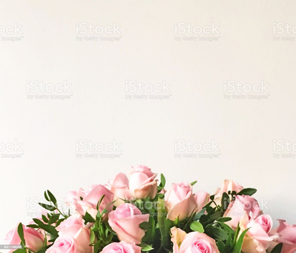 White background and frame with bouquet of pink roses stock photo