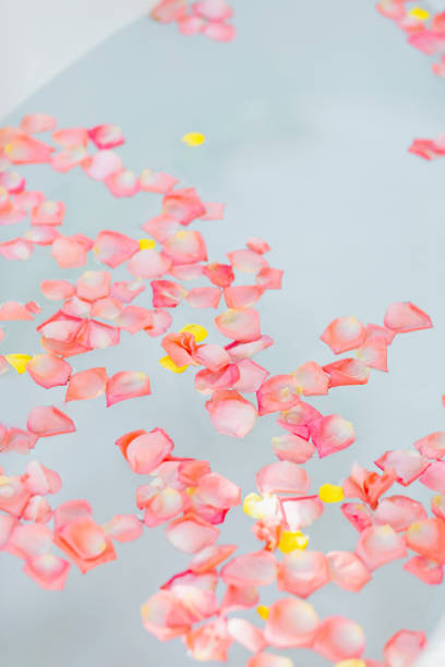 White bath with rose petals picture id1163718841?b=1&k=6&m=1163718841&s=612x612&w=0&h=tchnyqu3s0rroge3wym8nvh4cypzhrzi1qu5dlvi8r8=