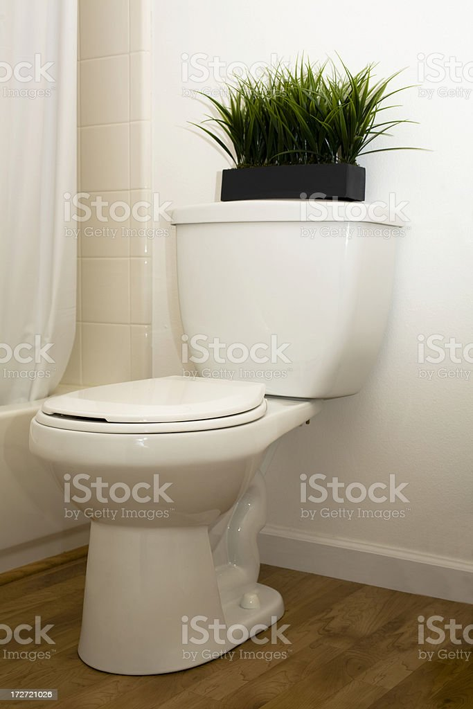 White bathroom toilet. Home, domestic room. stock photo