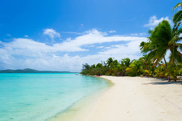White beach on desert island in Aitutaki atoll, Cook Islands stock photo