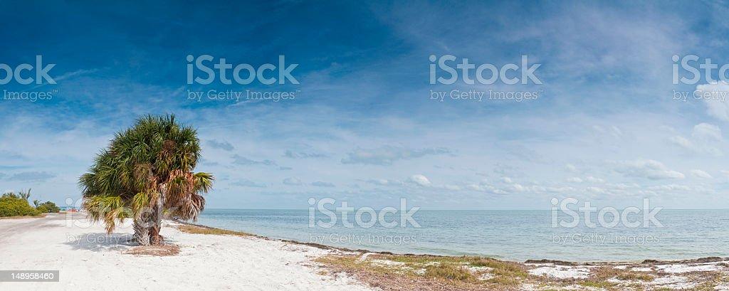 White beach Tampa Bay Florida stock photo
