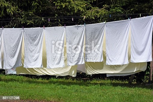 Shot on the white bedding sheets drying naturally in the sunshine on the twine.