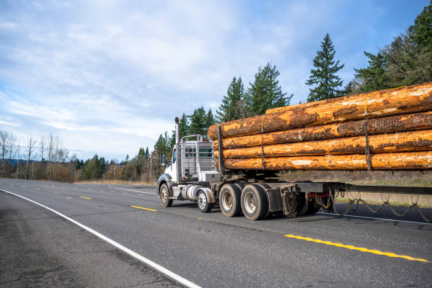 White big rig semi truck with day cab transporting wood logs on the special semi trailer driving on the road with winter forest on the hill stock photo
