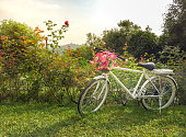 White bike with beautiful flowers in the green garden have sunny in the morning