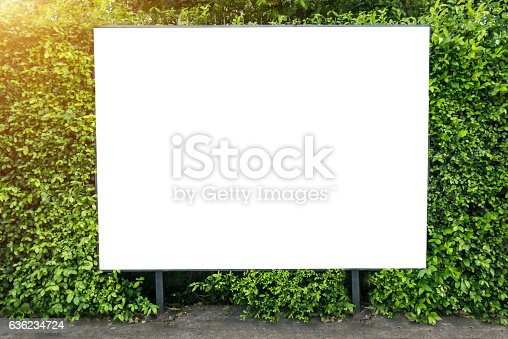 istock White billboard on spring summer green leaves 636234724