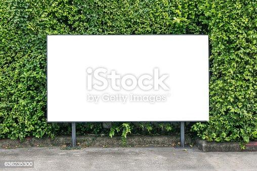 istock White billboard on spring summer green leaves 636235300
