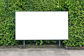 istock White billboard on spring summer green leaves 636235300