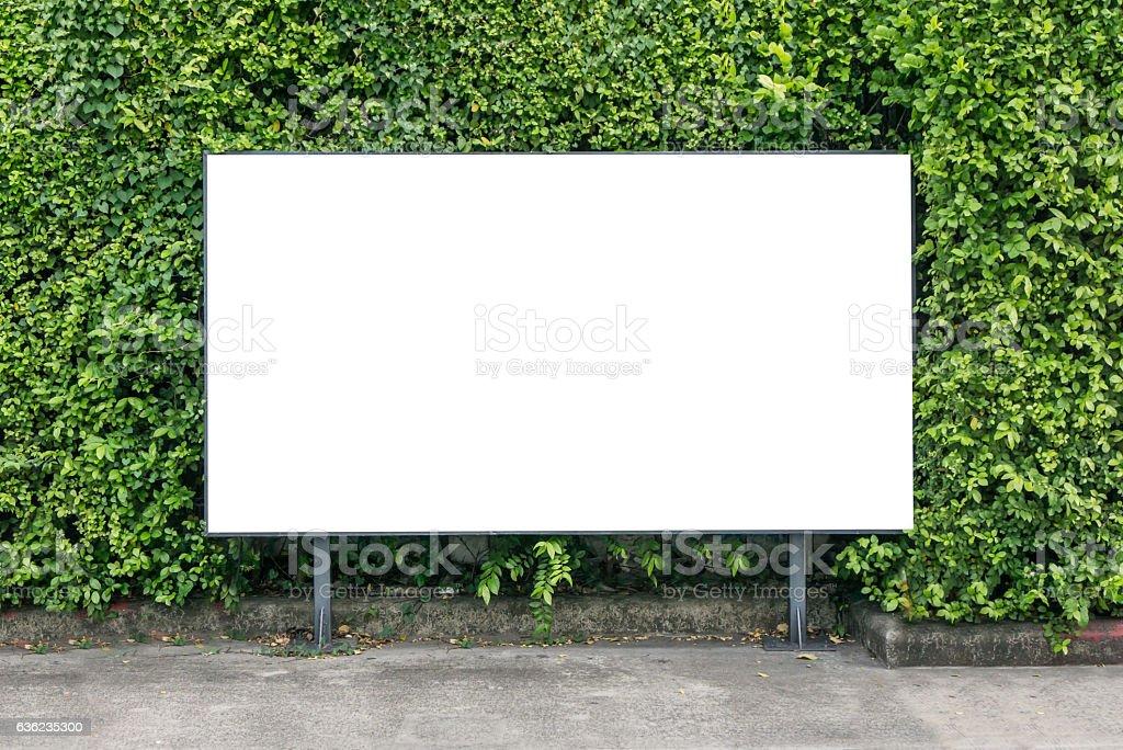 White billboard on spring summer green leaves stock photo
