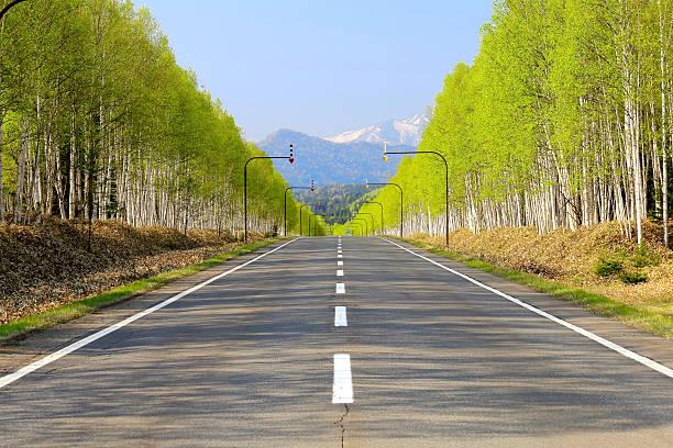 White birch Road at the foot of Mikuni Pass of Hokkaido stock photo