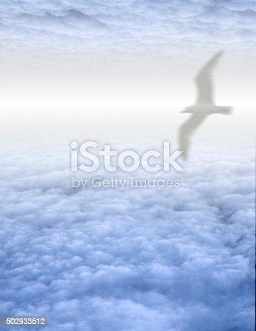 istock White Bird in Clouds 502933512