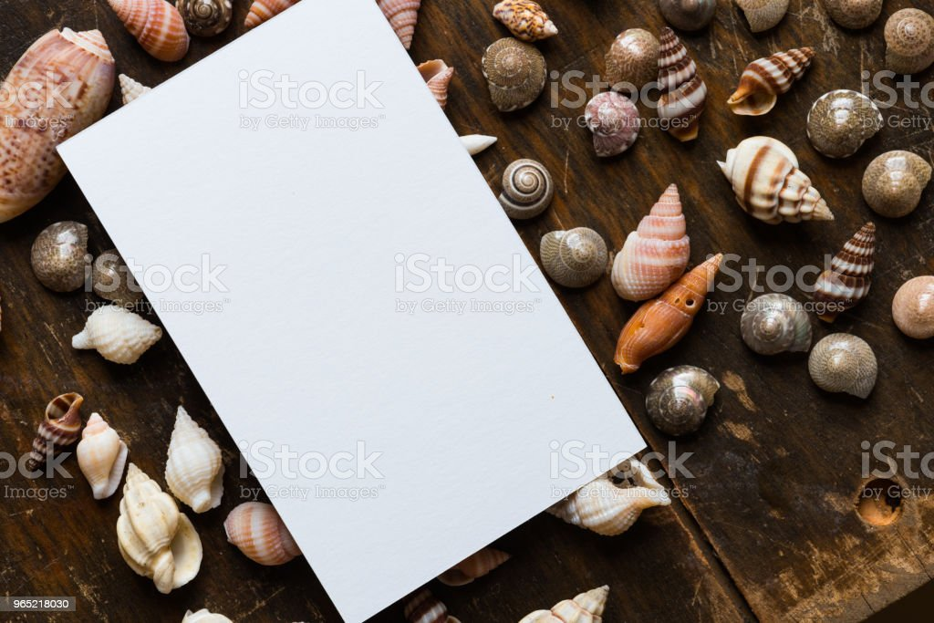 White blank card with shell royalty-free stock photo