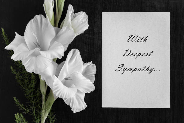 White blank condolence card with text and white gladiolus flower on the dark background. stock photo