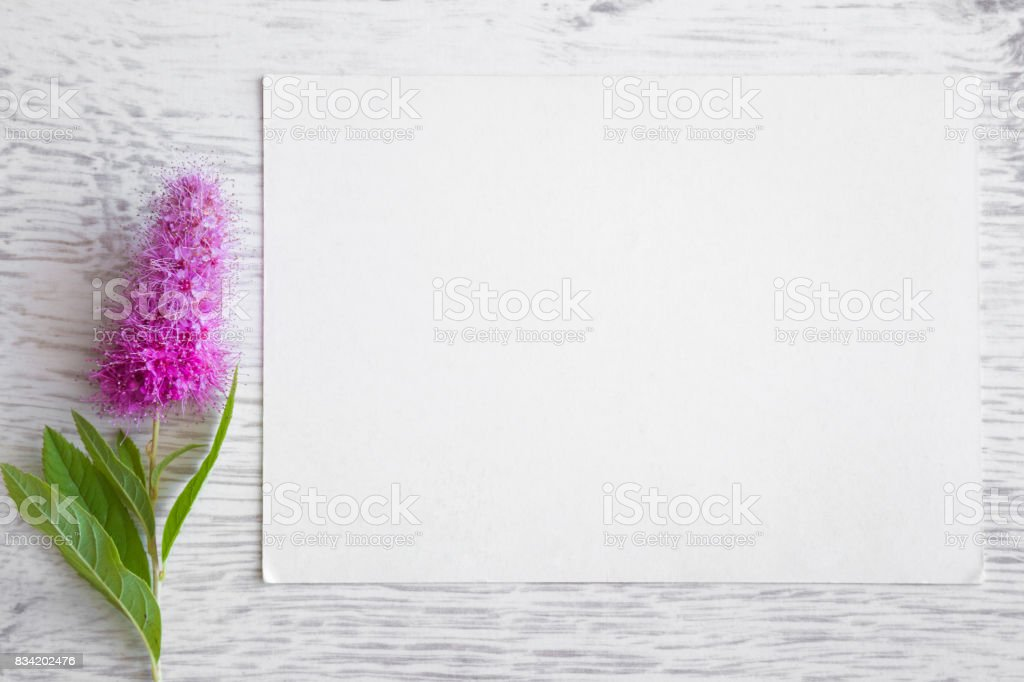 White blank greeting card with pink flower on the wooden background white blank greeting card with pink flower on the wooden background empty place for a m4hsunfo