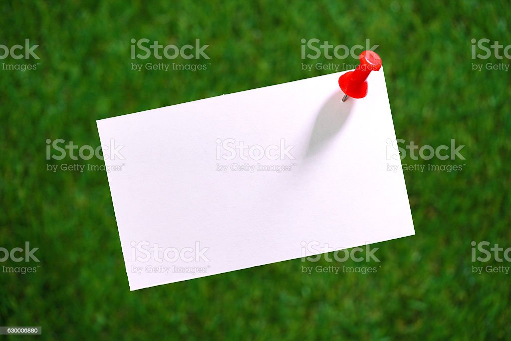 White Blank notepad on the green blurred stock photo