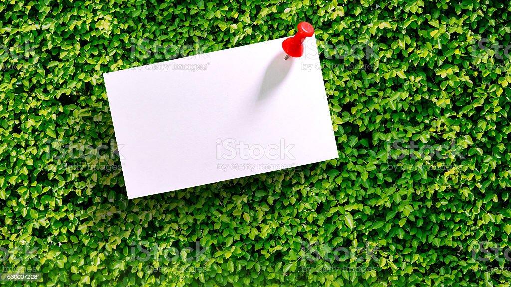 White Blank notepad on the green bush stock photo