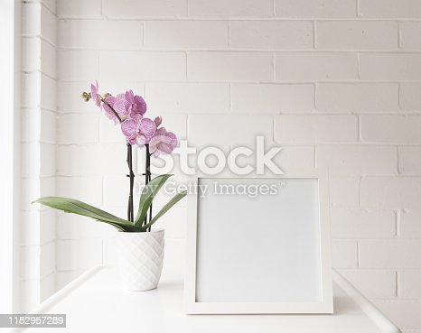 White blank square frame on table with purple striped phalaenopsis order against painted brick wall (selective focus)