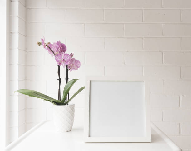 White blank square frame on table with purple orchid stock photo