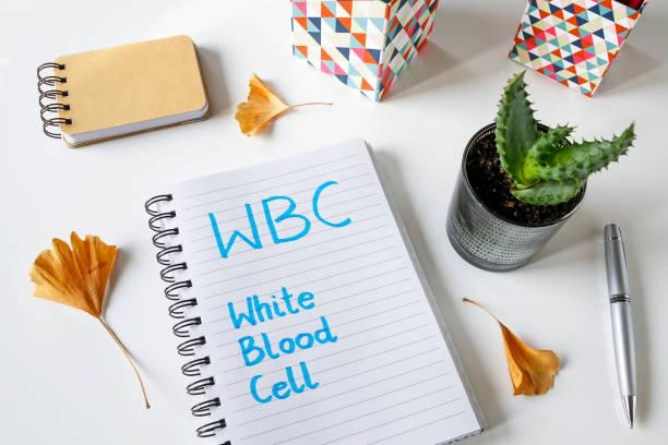 weißen blutkörperchen wbc, geschrieben in notebook - arzt zitate stock-fotos und bilder