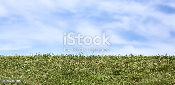 White blue sky with clouds and fresh green grass on the background banner.