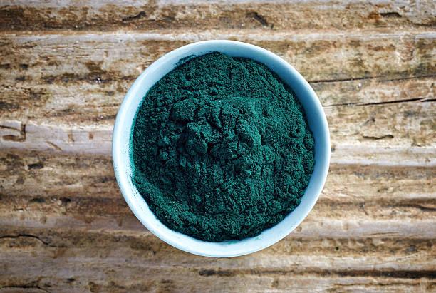 white bowl of dark green spirulina algae powder - spirulinabakterie bildbanksfoton och bilder
