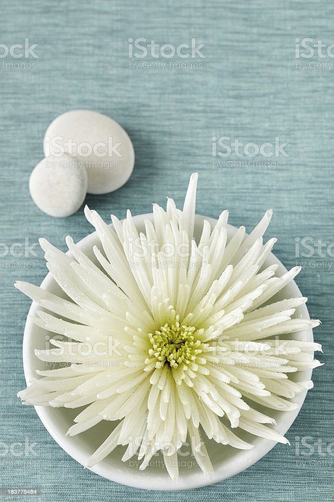 White bowl with flower and pebbles on blue fabric surface royalty-free stock photo