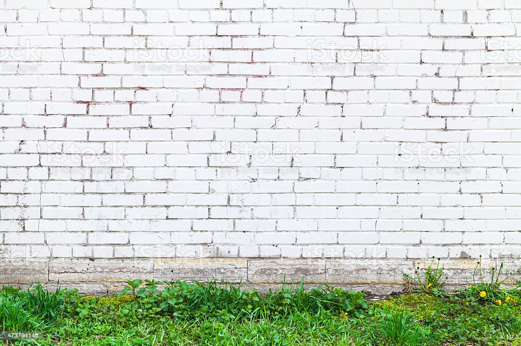 White brick wall and fresh green grass stock photo