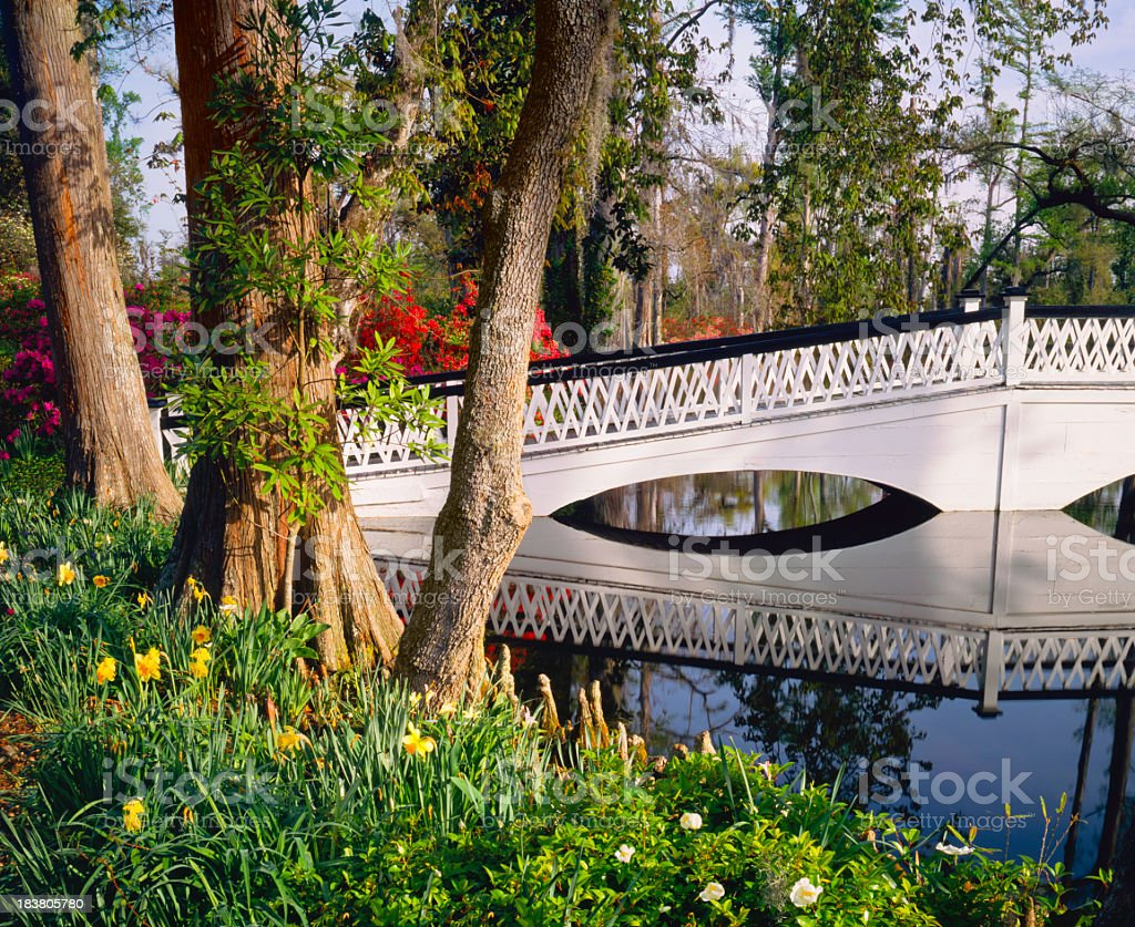 White bridge crosses water in South Carolina Garden (P) royalty-free stock photo