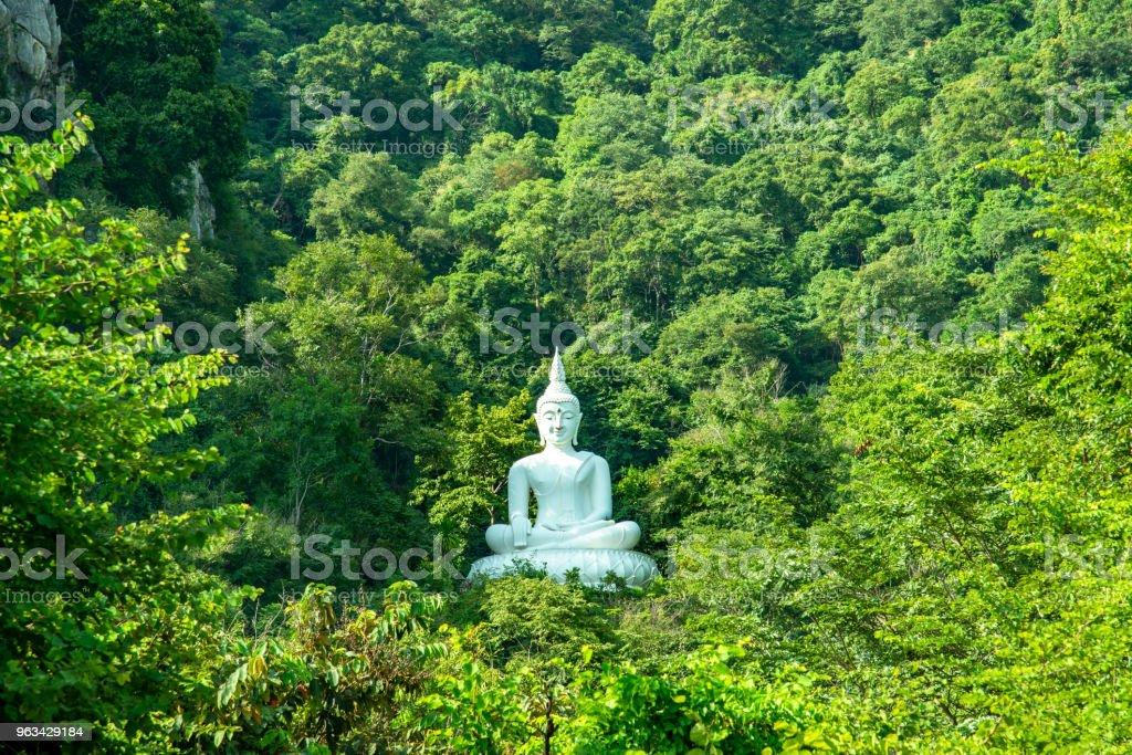 Image de Bouddha blanc sur une colline entourée d'arbres - Photo de Antique libre de droits