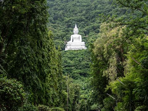 istock white Buddha statue 1030479226