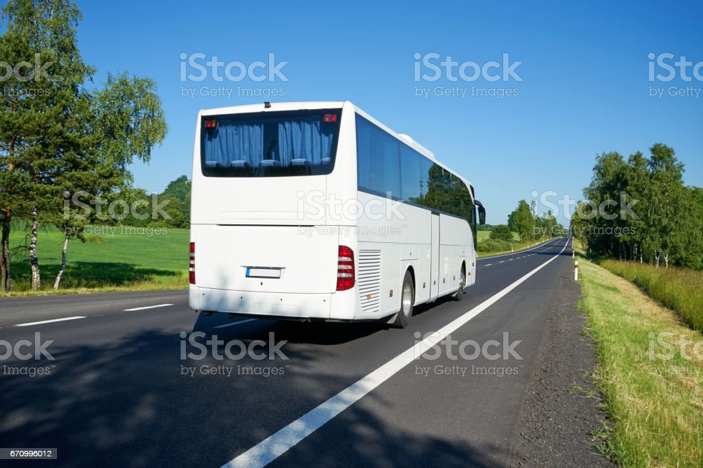 White bus moving on asphalt road lined avenue of trees stock photo
