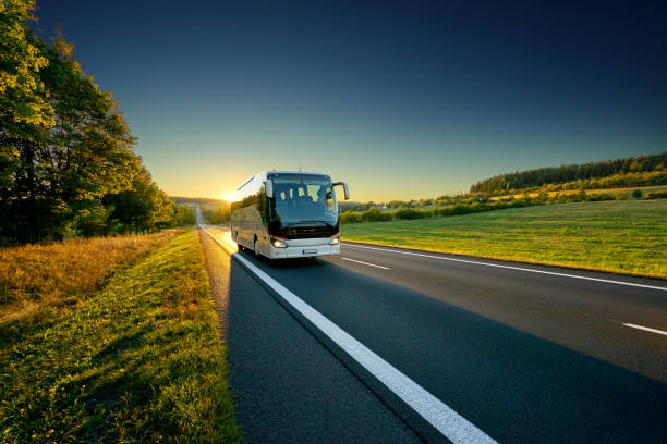 White bus traveling on the asphalt road around line of trees in rural landscape at sunset White bus traveling on the asphalt road around line of trees in rural landscape at sunset bus stock pictures, royalty-free photos & images