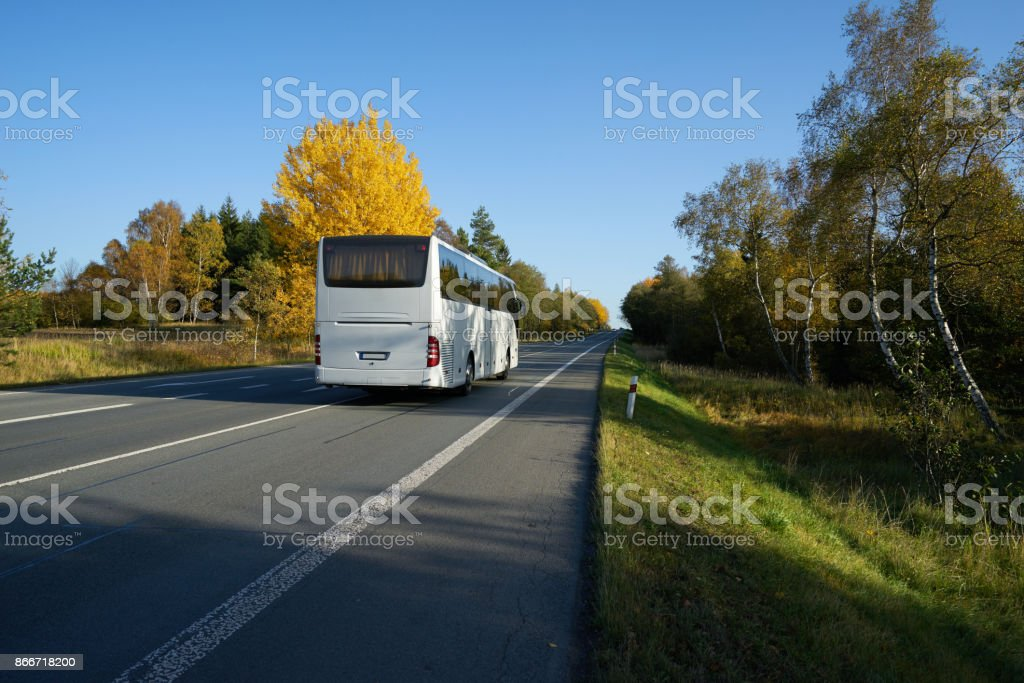 White bus traveling on the asphalt road leading through a forest in autumn colors stock photo