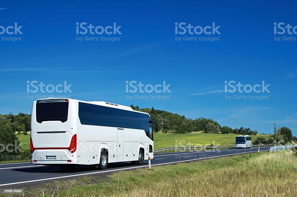 White buses driving on asphalt road in a rural landscape. Sunny...