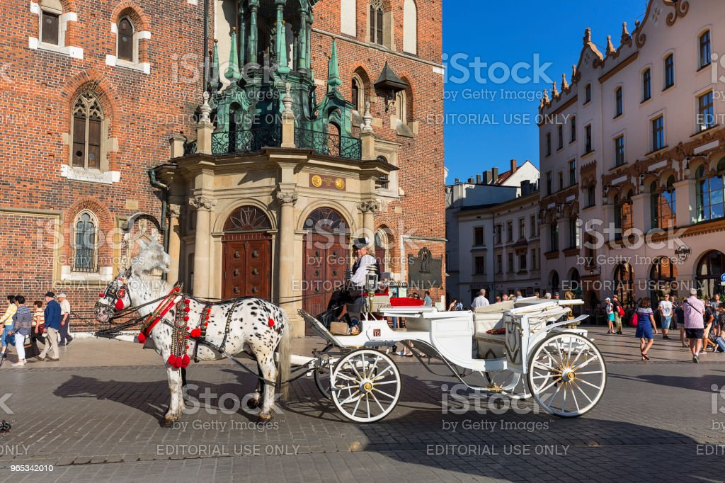 White cab with horses-drawn in a festive harness on the main market square, Krakow, Poland zbiór zdjęć royalty-free