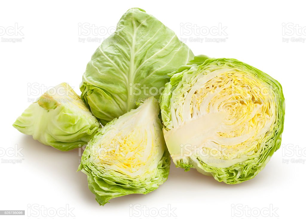white cabbage stock photo